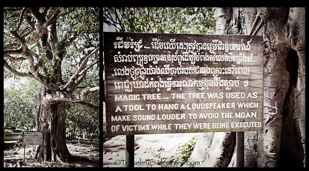 Visiting Tuol Sleng Prison Museum & Choeung Ek Killing ... | 1008 x 558 jpeg 656kB